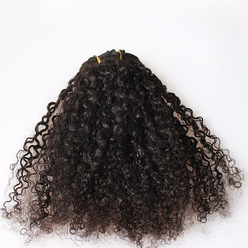 360 lace frontal wigs 150 density full lace human hair wigs loose 3b 3c kinky curly clip in human hair extensions 8a brazilian african american clip in hair extensions kinky curly clip ins pmusecretfo Choice Image